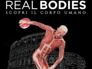 real-bodies_630