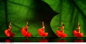W-MOMIX-FOREVER_2